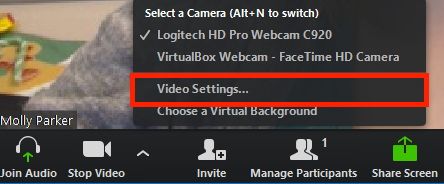 zoom video conference app settings